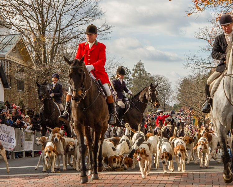 left to right carey shefte huntsman hugh robards libby gilbert and richard mcwade of the middleburg hunt
