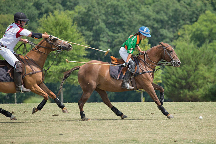 Grass polo. (Courtesy of Greenhill Media.)