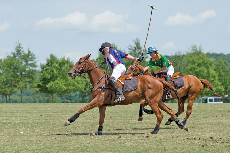 Great Meadow Grass Polo. (courtesy of Greenhill Media.)
