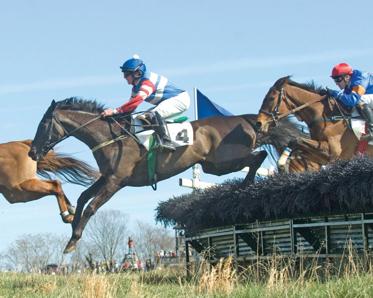 The Locust Hill Open Hurdle Hishi Soar, owned and trained by Randolph D. Rouse, ridden by Gerard Galligan.