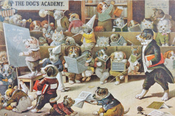 The Dog's Academy.