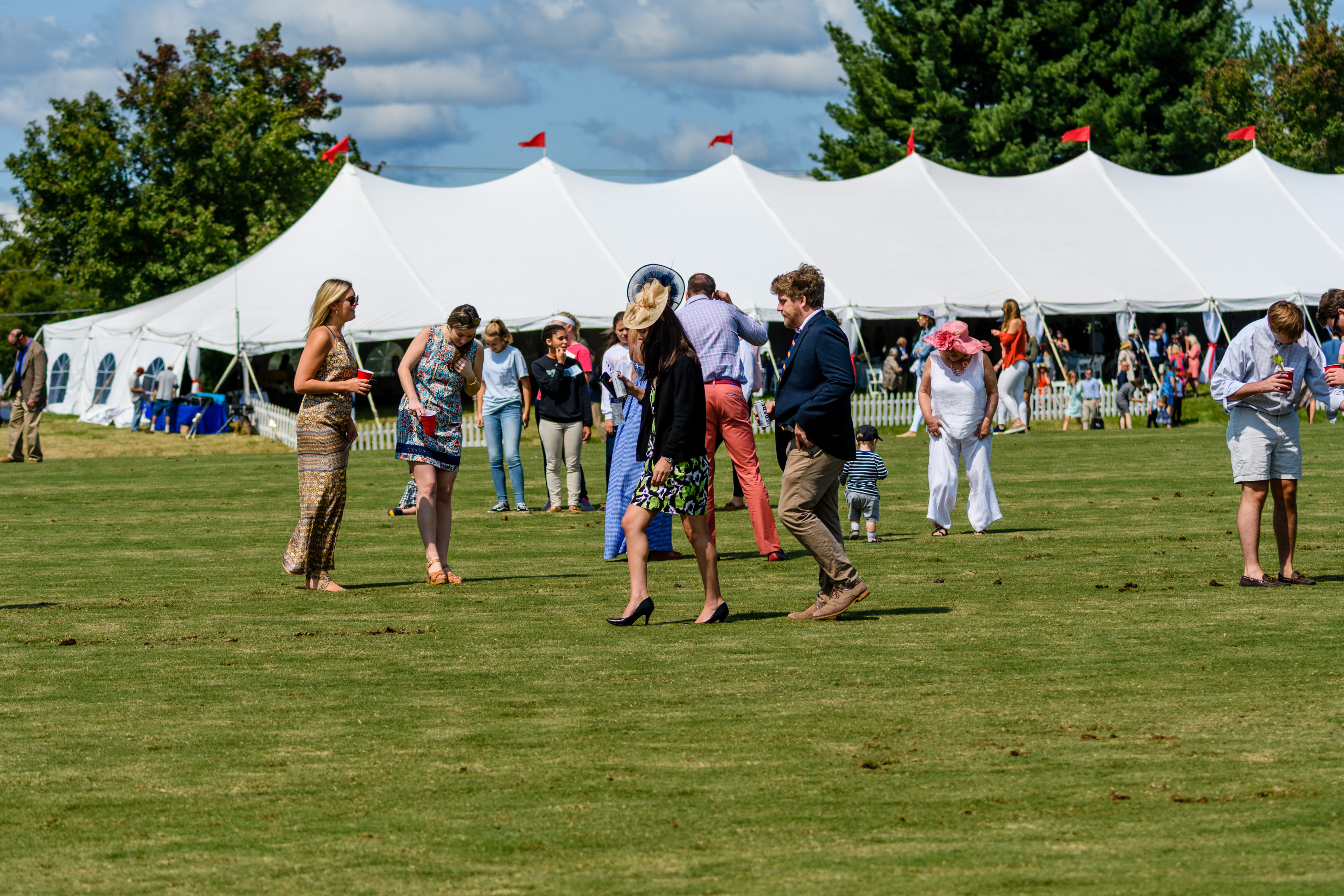 NSLM Polo Classic Divot Stomp. Photo by Middleburg Photo