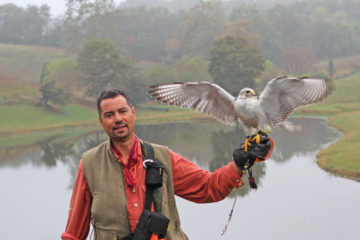 Mike Dupuy and his male Tiercel Gyr Saker Falcon, Apollo.