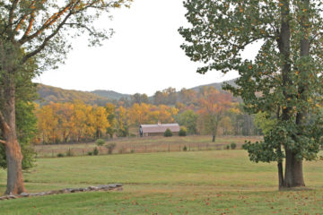 View from Barton Oaks. Preserving open spaces and beautiful vistas is at the heart of LTV's work.