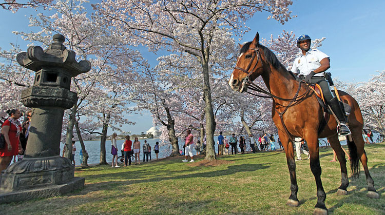 The U.S. Park Police Horse Mounted Unit is one of the oldest police equestrian units in the United States. The storied unit provides daily patrol to the National Mall and adjoining areas, as well as security for large events