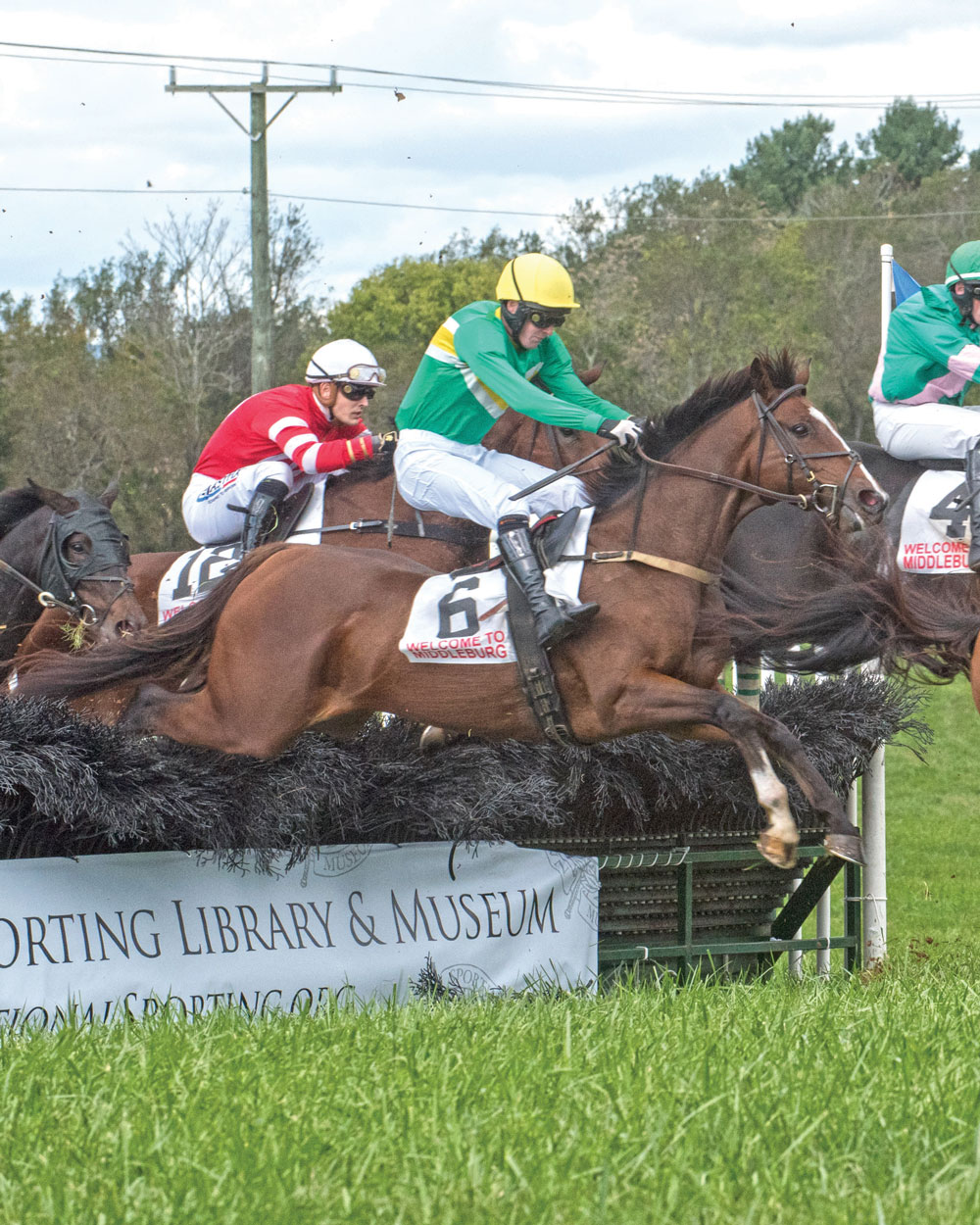 Stormy Alex won the Bon Nouvel hurdle race ridden by Graham Watters owned by Irvin Naylor 1st race.