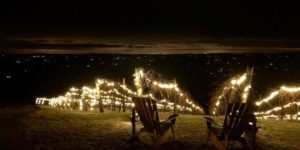 Lighting of the Vines: Launch Party @ Bluemont Vineyard